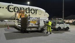 Condor fliegt mit der 767-300 Fracht für DHL ab Leipzig.